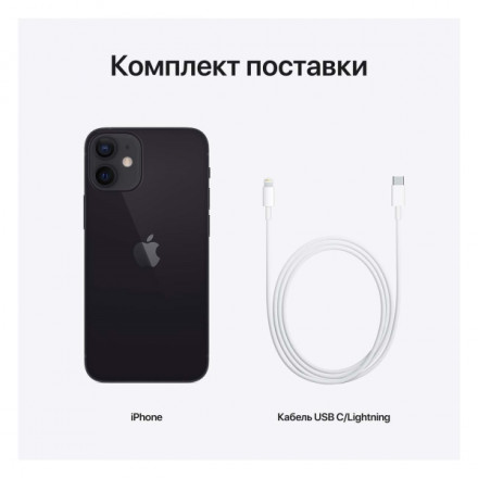 Купить Смартфон Apple iPhone 12 mini 256GB Black (MGE93RU/A) в Донецке ДНР